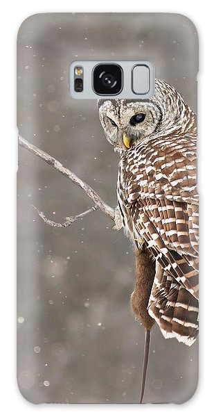 The Silent Hunter Galaxy Case by Mircea Costina Photography