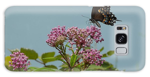 The Spicebush Swallowtail Of Prettyboy Reservoir Galaxy Case by Donald C Morgan
