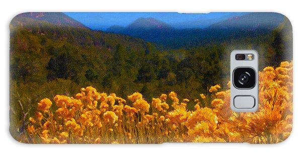 The Spring Mountains Galaxy Case