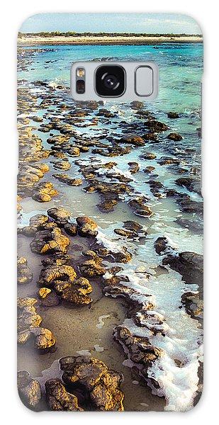 The Stromatolite Family Enjoying Its 1277500000000th Sunset Galaxy Case