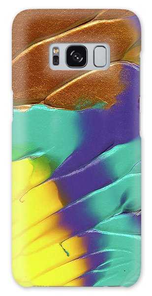 The Sunflower Galaxy Case