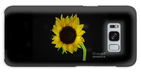 The Sunflower Galaxy Case by Ray Shrewsberry