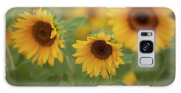 The Sunflowers In The Field Galaxy Case