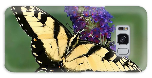 The Swallowtail Galaxy Case by Sue Melvin