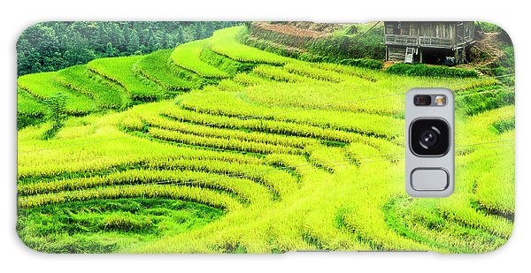 The Terraced Fields Scenery In Autumn Galaxy Case
