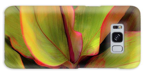 The Ti Leaf Plant In Hawaii Galaxy Case