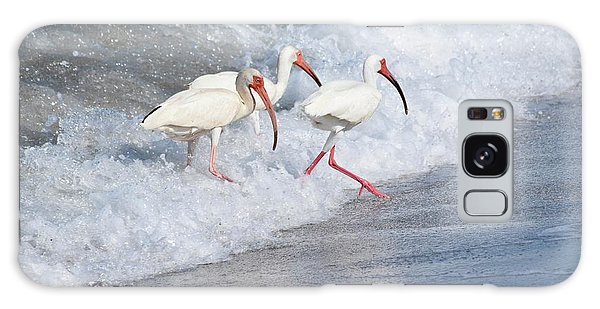 The Tide Of The Ibises Galaxy Case