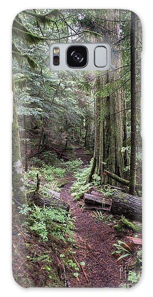 the Trail Galaxy Case