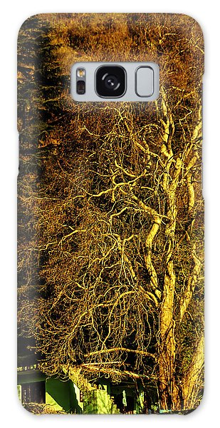 The Tree And The House Galaxy Case