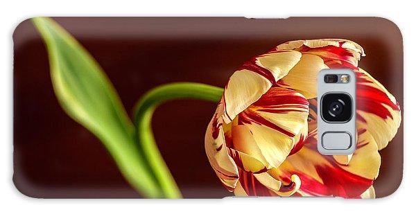 The Tulip's Bow Galaxy Case