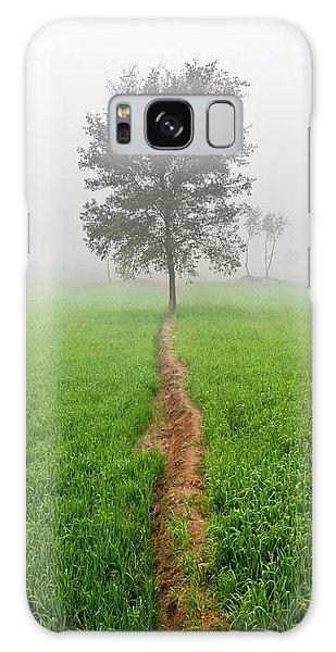 The Walking Tree Galaxy Case