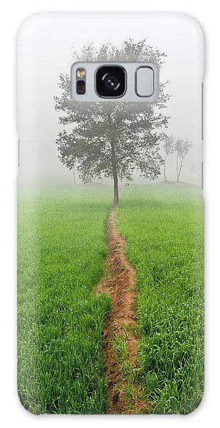The Walking Tree Galaxy Case