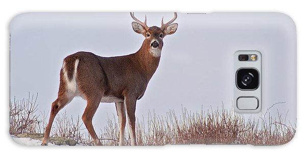The Watchful Deer Galaxy Case