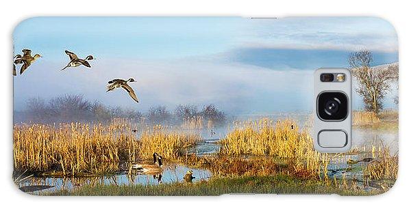 The Wetlands Galaxy Case