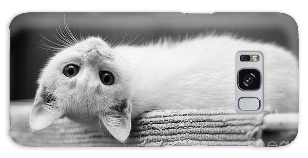 The White Kitten Galaxy Case