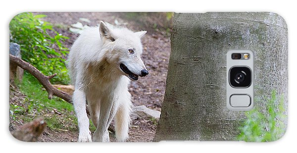 Galaxy Case featuring the photograph The White Wolf by SR Green