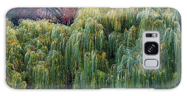 The Willows Of Central Park Galaxy Case