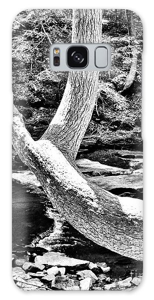 The Wishbone Tree Bw Galaxy Case
