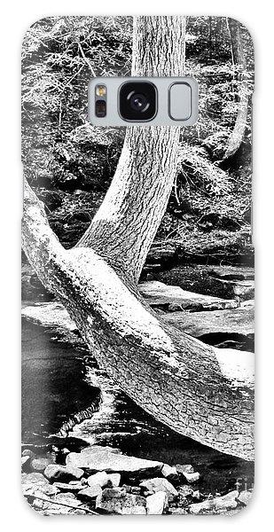 The Wishbone Tree Bw Galaxy Case