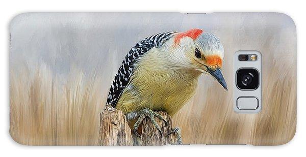 The Woodpecker Galaxy Case