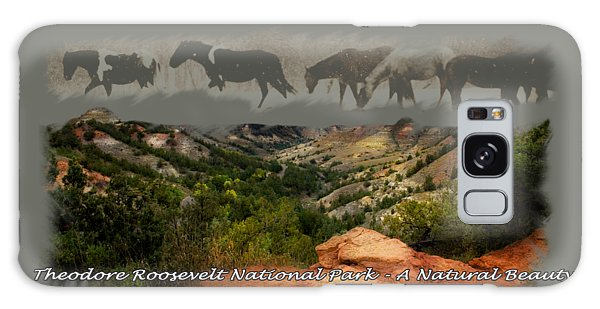 Theodore Roosevelt National Park Galaxy Case