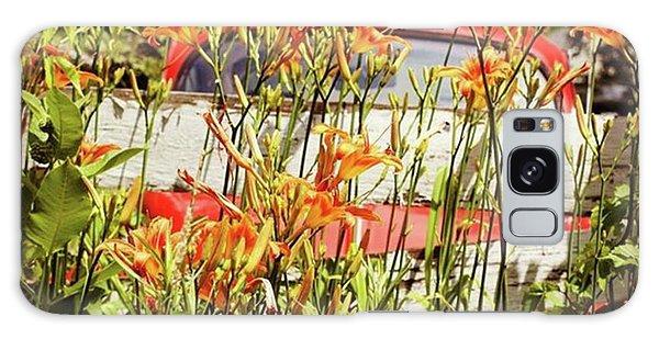 Volkswagen Galaxy Case - There's An Orange Bug In The Orange by Heidi Hermes