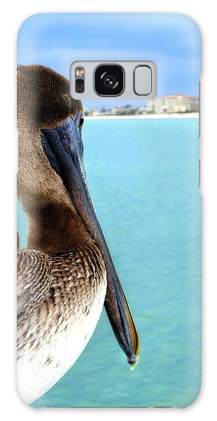 This Is My Town - Pelican At Clearwater Beach Florida  Galaxy Case by Angela Rath