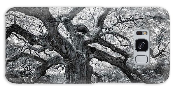 Galaxy Case - This Tree Is Located In Charleston by Jon Glaser