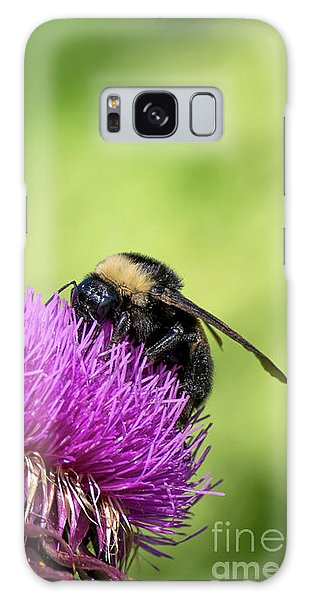 Thistle And Bee Galaxy Case