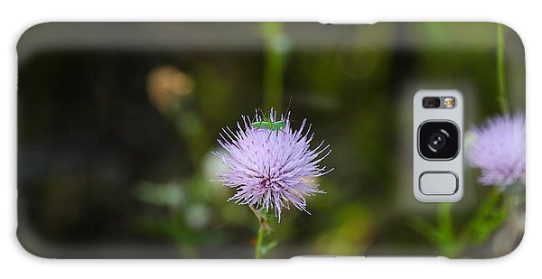Thistles Morning Dew Galaxy Case by Christopher L Thomley