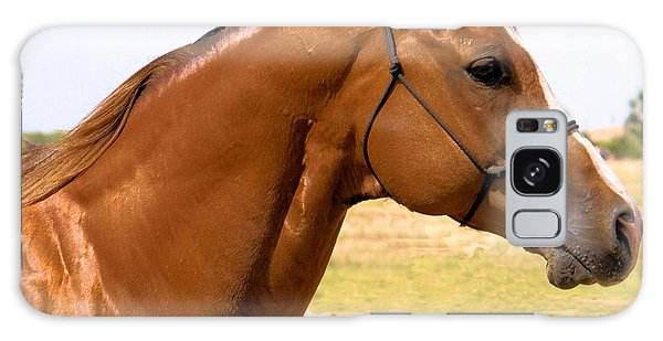 Thoroughbred Head Shot Galaxy Case