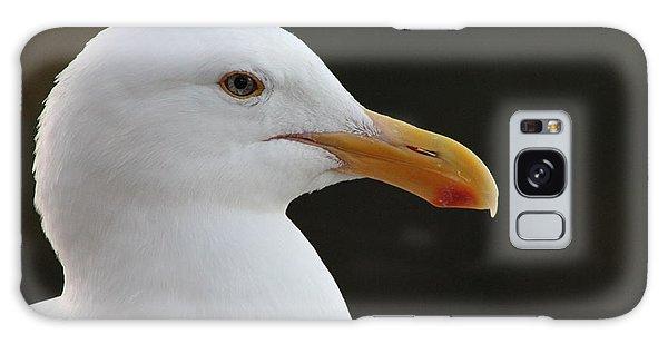 Thoughtful Gull Galaxy Case