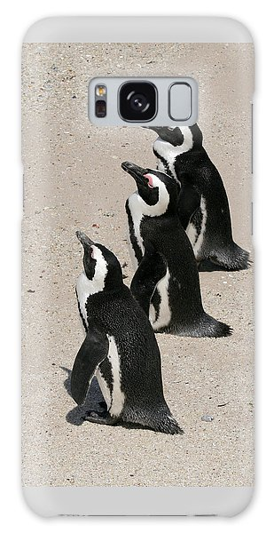 Three African Penguins Galaxy Case