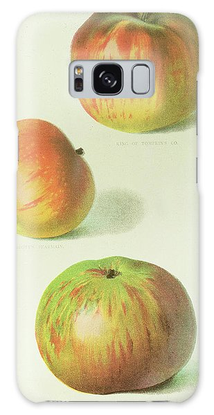 Three Apples Galaxy Case