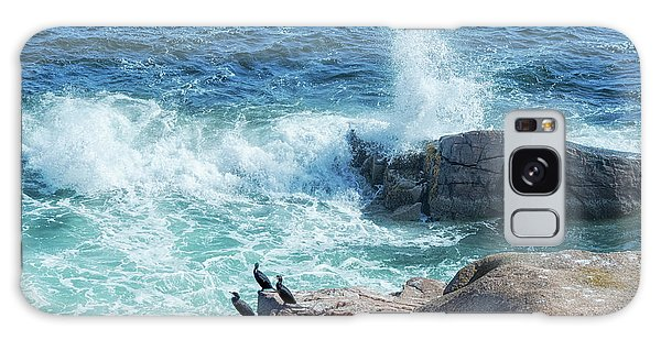 Three Cormorants At Monument Cove, Acadia National Park Galaxy Case
