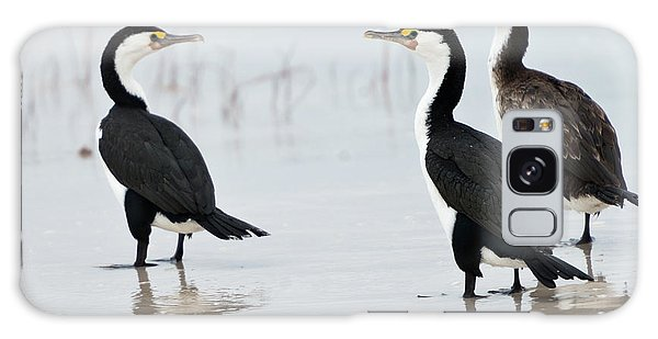 Three Cormorants Galaxy Case by Werner Padarin