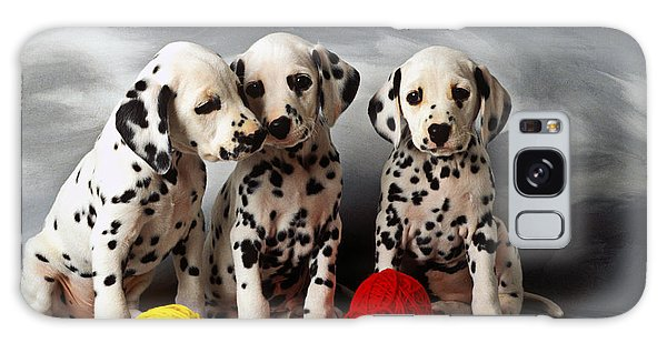 Three Dalmatian Puppies  Galaxy Case