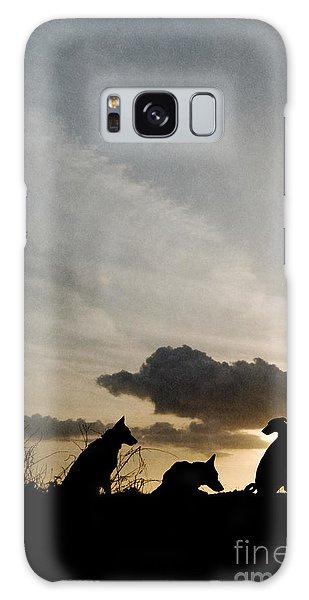 Three Dogs At Sunset Galaxy Case