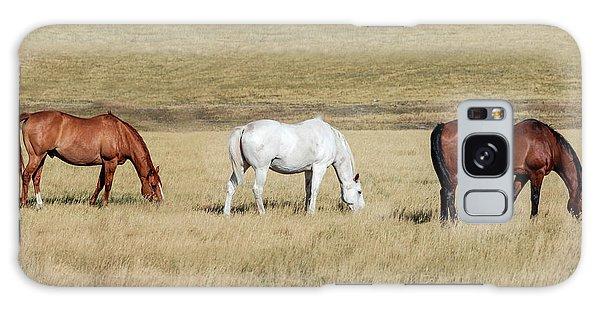 Teton Range Galaxy Case - Three Horses by Todd Klassy