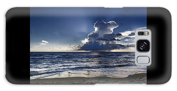 Galaxy Case featuring the photograph Three Ibises Before The Storm by Steven Sparks