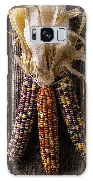 Indian Corn Galaxy Case - Three Indian Corn by Garry Gay