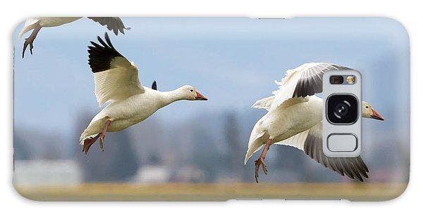 Goose Galaxy Case - Three Landing by Mike Dawson