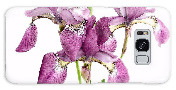 Three Mauve Japanese Irises Galaxy Case
