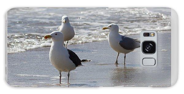 Three Of A Kind - Seagulls Galaxy Case