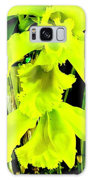 Three Orchids In Yellow Galaxy Case