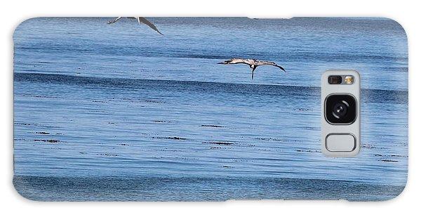 Three Pelicans Diving Galaxy Case