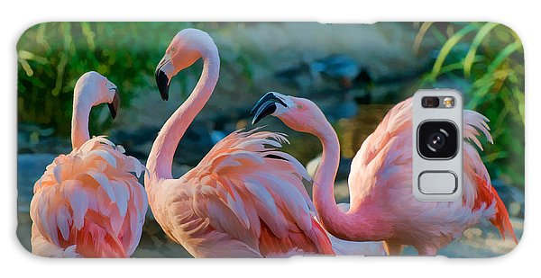 Three Pink Flamingos Strutting Their Stuff Galaxy Case