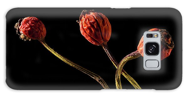 Three Rose Hips Galaxy Case
