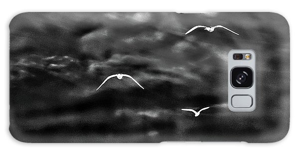 Three Seagulls Galaxy Case