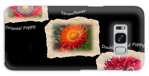 Three Tattered Tiles Of Red Flowers On Black Galaxy Case by Valerie Garner